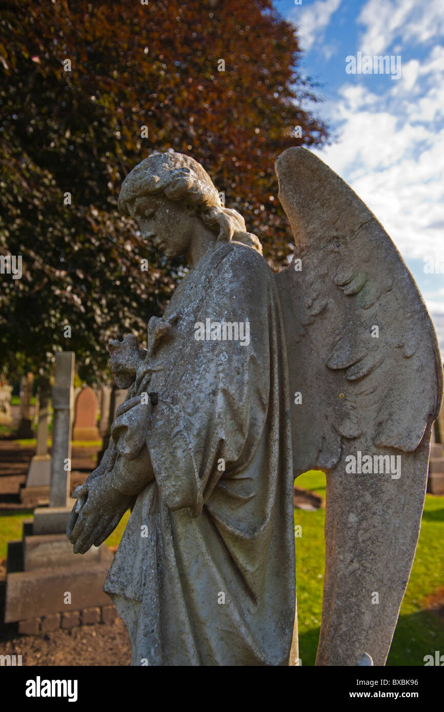 Stone, angel, Haddington, St Mary's church, east Lothian, Scotland, August 2010 - Stock Image