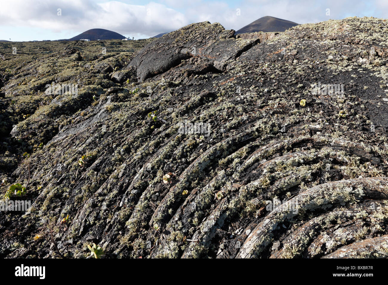 Ropy lava with lichens, Lanzarote, Canary Islands, Spain, Europe - Stock Image