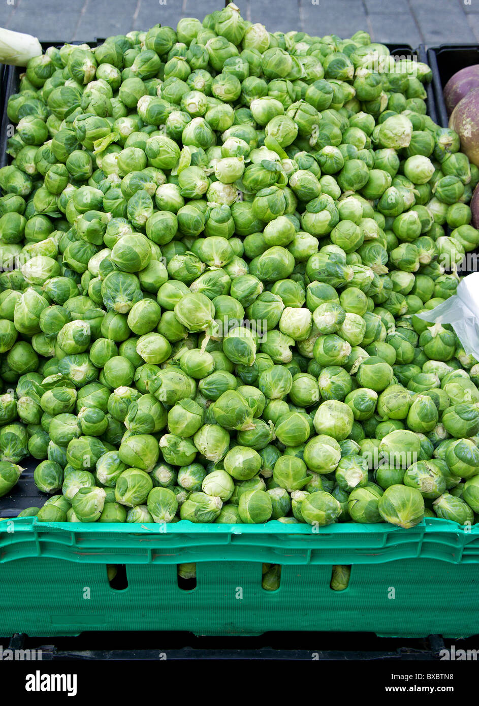 fresh sprouts on a market stall, uk - Stock Image