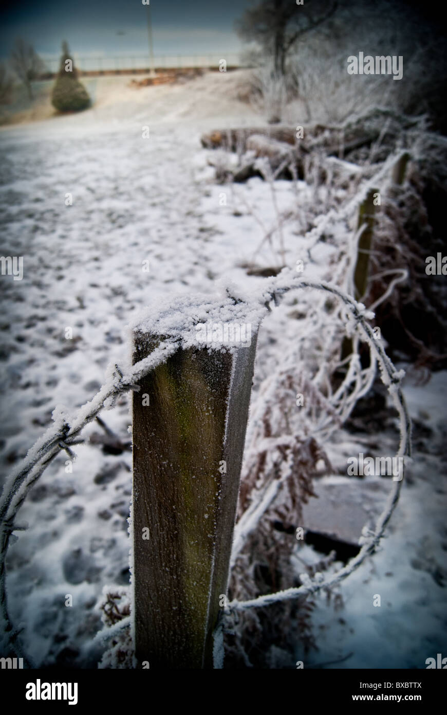A frosty fence post in the West of Scotland Science Park - Stock Image