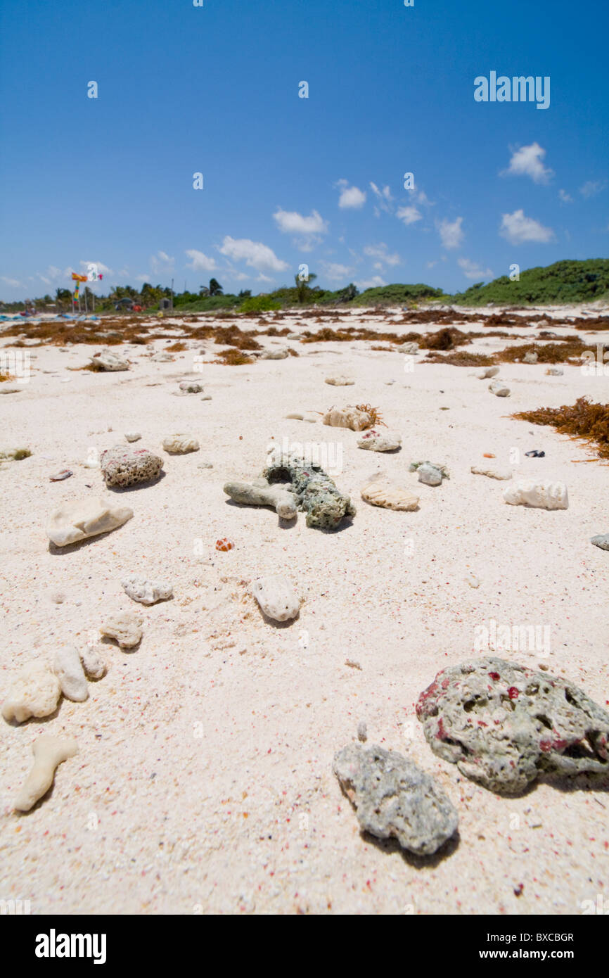 Rocks washed up on a sunny resort beach in mexico. - Stock Image