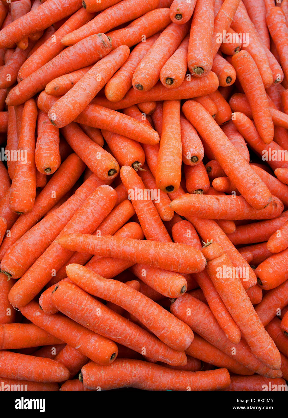 fresh carrots for sale on a market stall, uk - Stock Image