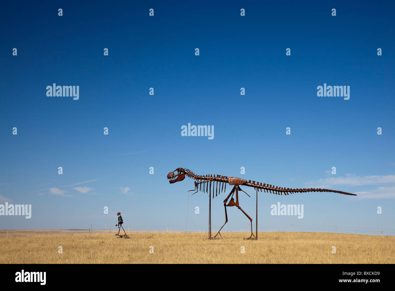 Stamford, South Dakota - Skeletons of a man and a dinosaur walking across the plains of South Dakota. - Stock Image