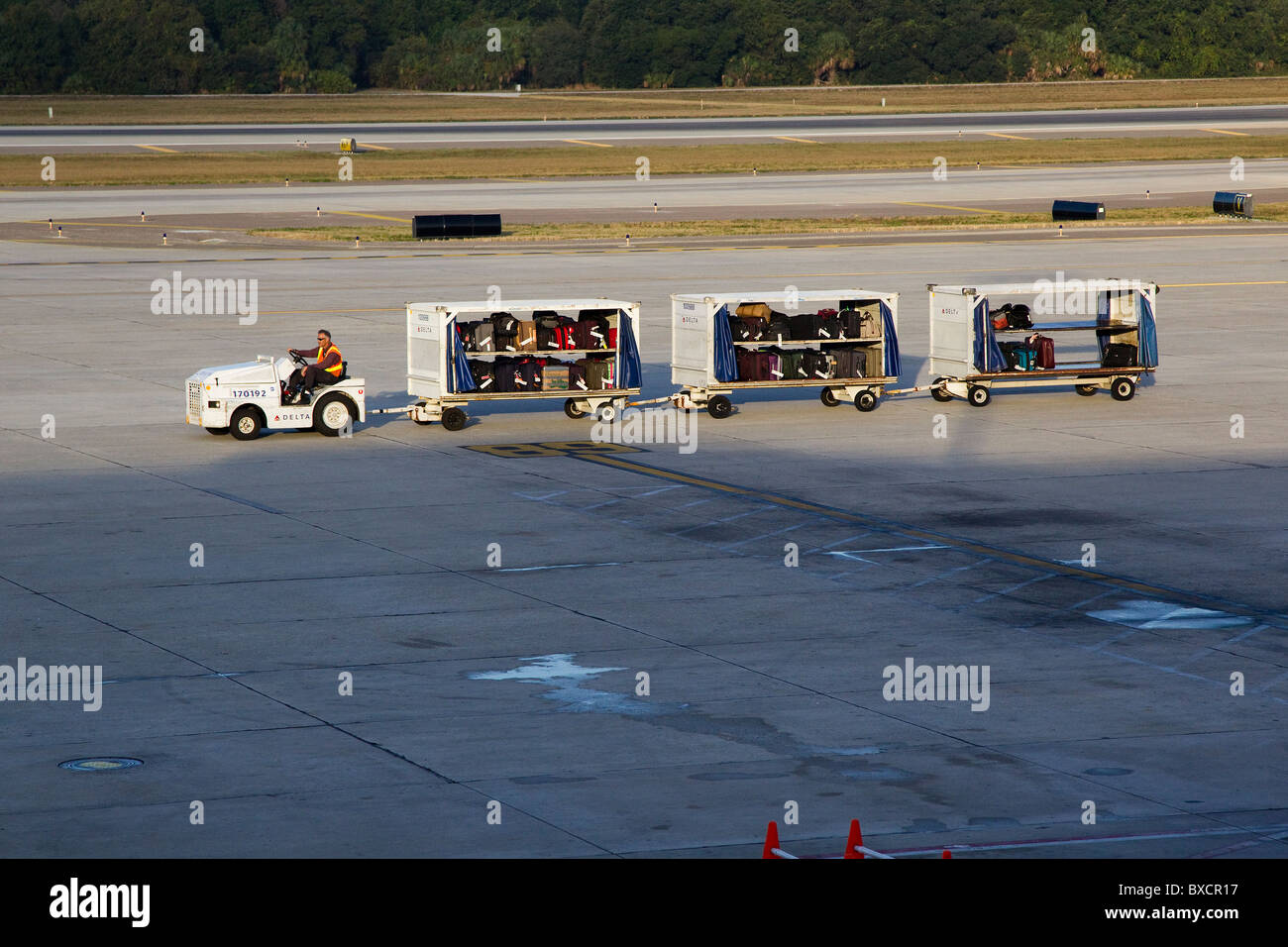 Airport worker drives airport vehicle with luggage to airplane on airport deck at Tampa International Airport, USA - Stock Image