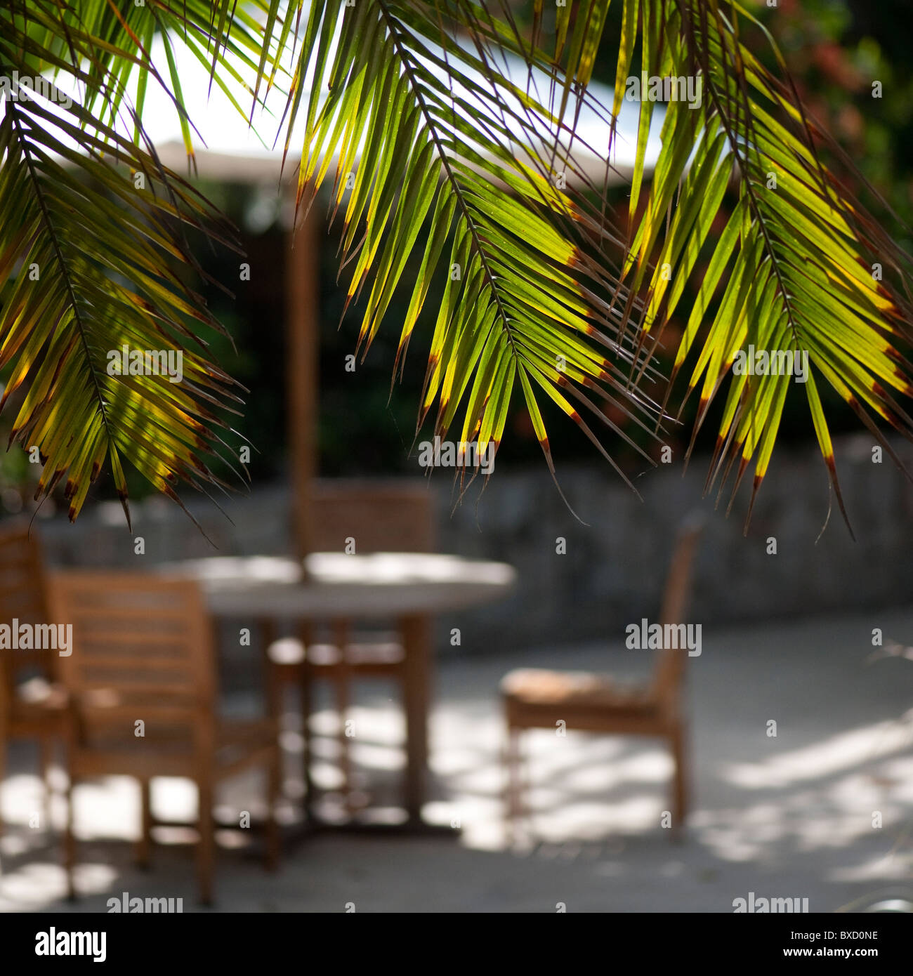 poolside table and chairs in costa rica stock photo 33477402 alamy