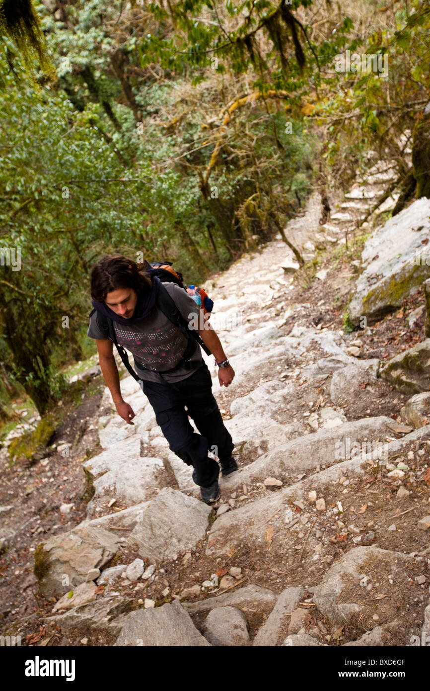 A male trekker ascends stone steps in Nepal. - Stock Image