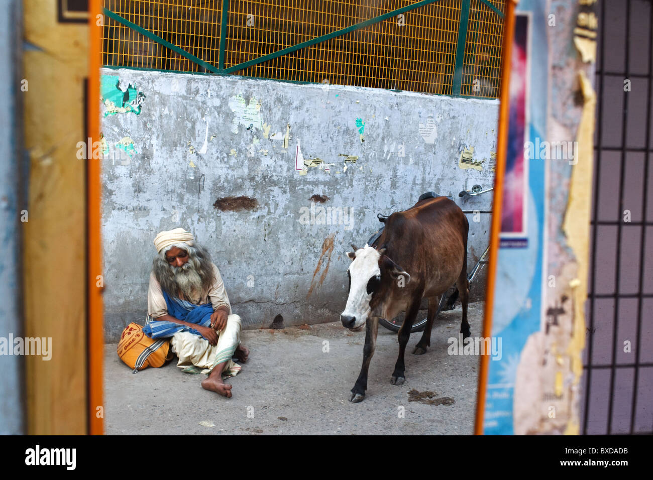A reflection of a sadhu and cow in a mirror in Rishikesh, Uttarakhand, India. Stock Photo