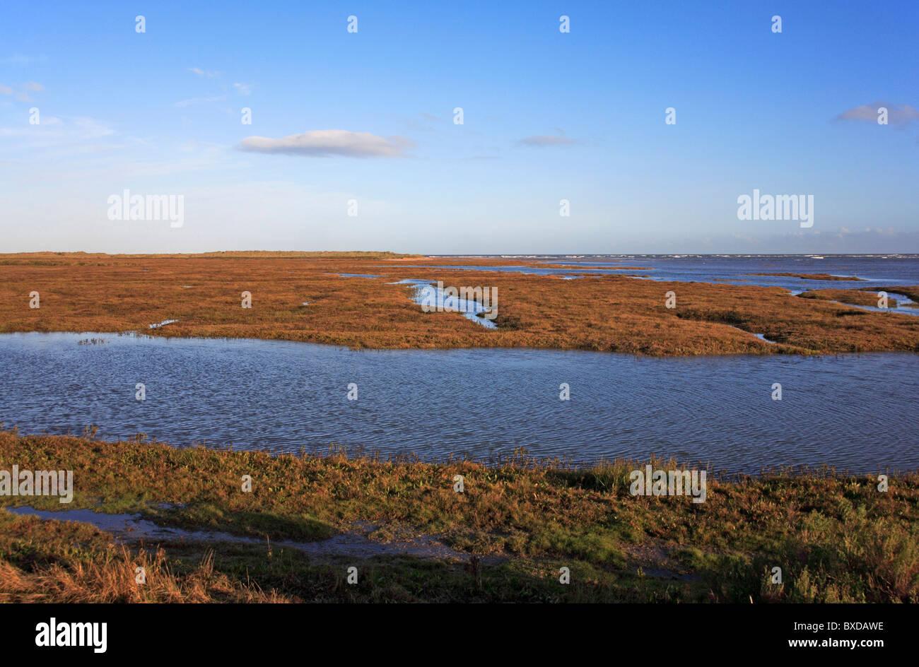 Saltings at high tide on the North Norfolk coast at Thornham, Norfolk, England, United Kingdom. Stock Photo