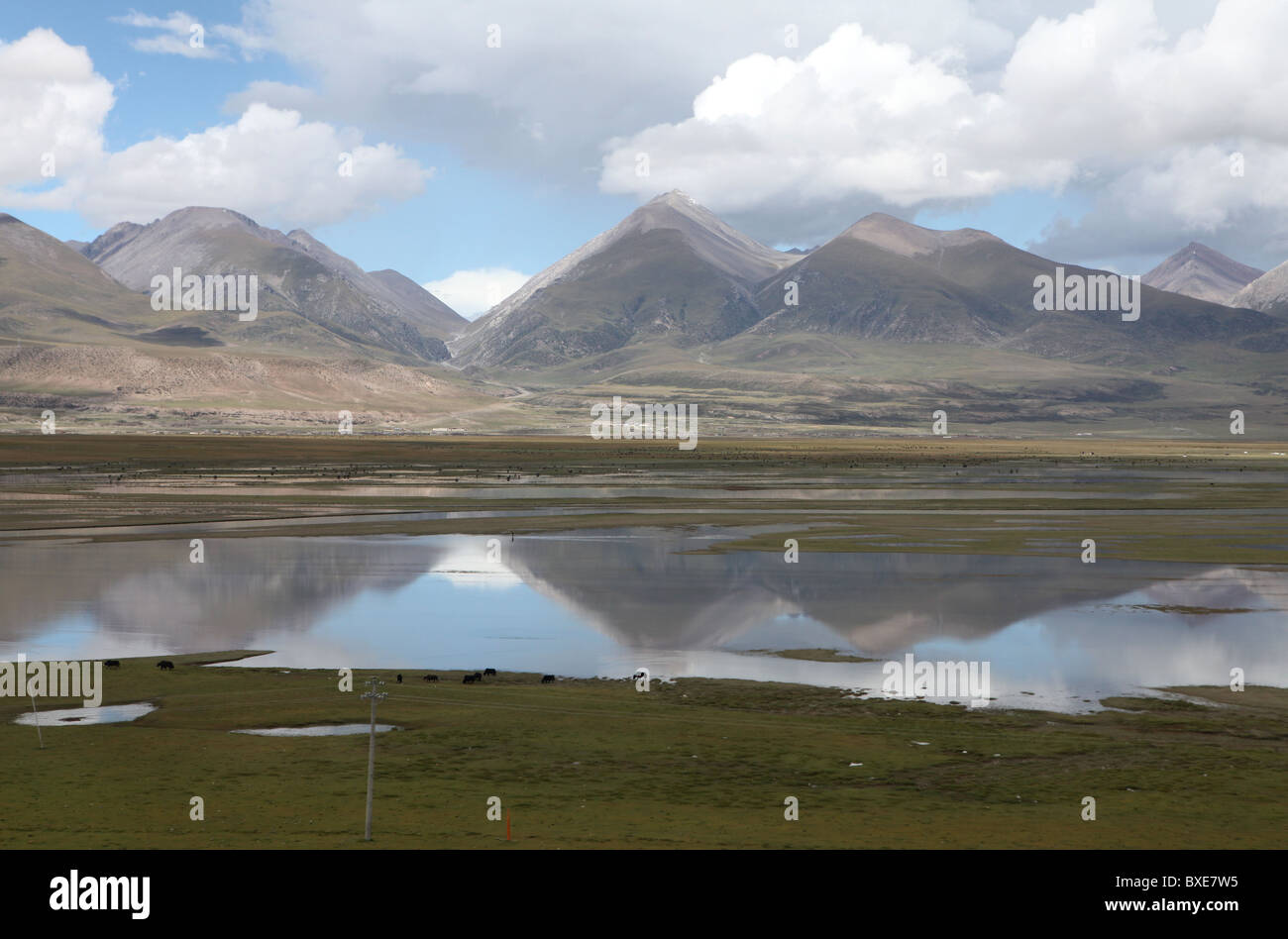 Views on the Qinghai - Xizang train, the world's highest railway, here between Chengdu and Lhasa, Tibet. - Stock Image