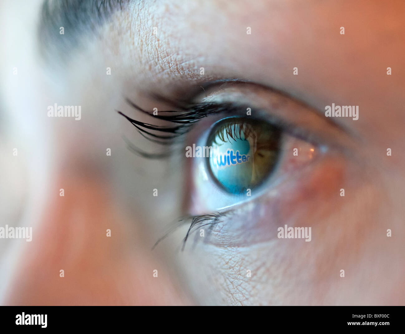 Reflection in an eye of logo from Twitter blogging website - Stock Image