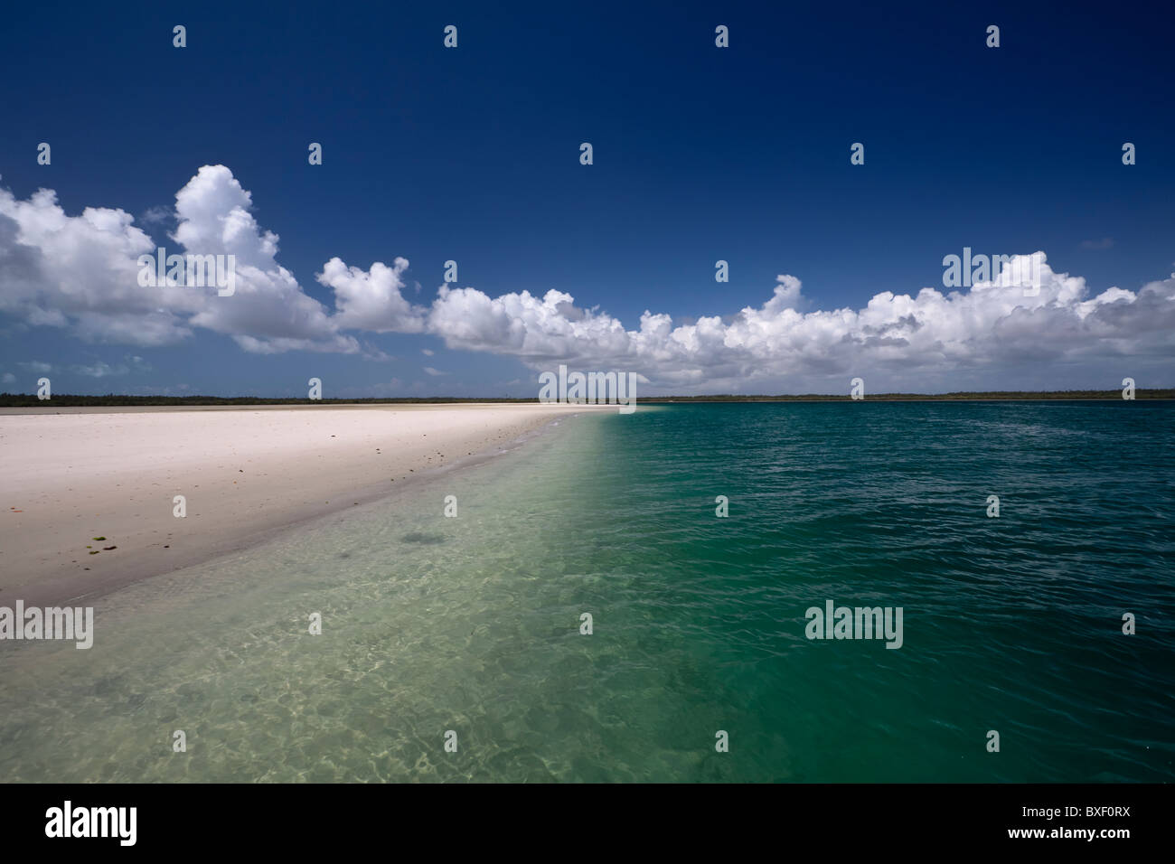 Deserted white sand bank in Chole bay - Stock Image