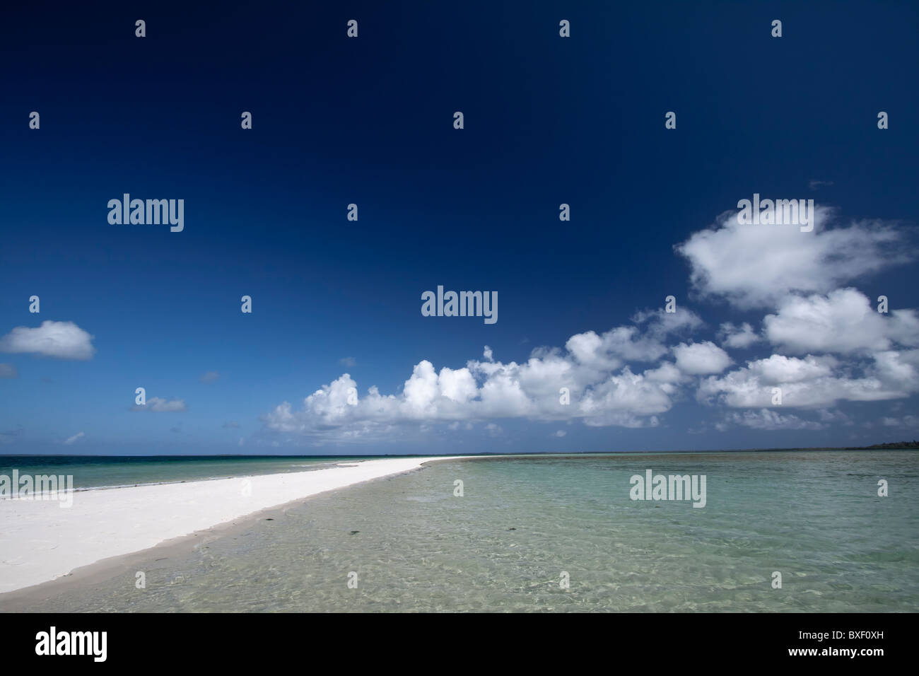 Deserted sandy island in Chole bay, Tanzania - Stock Image
