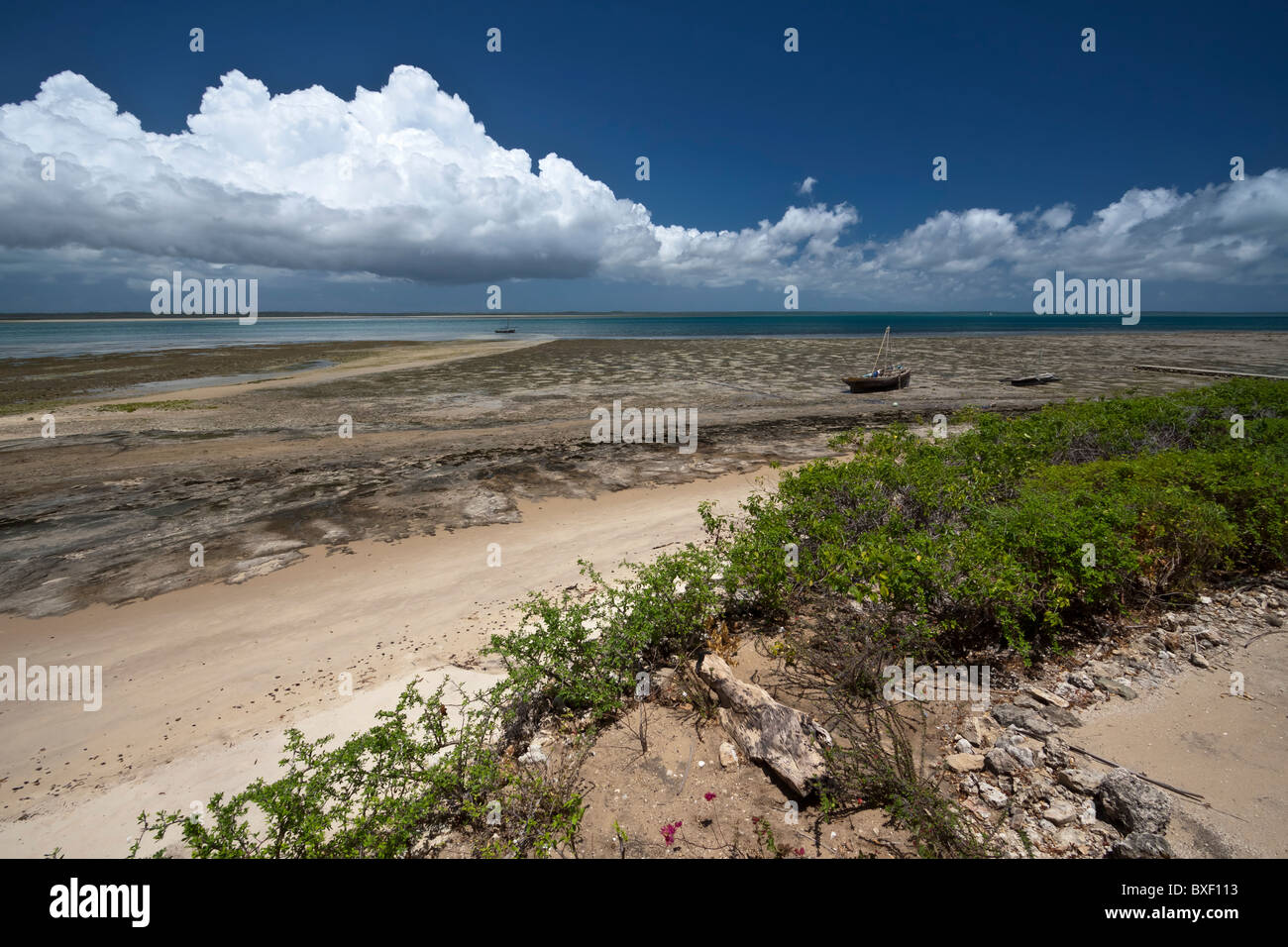 Foreshore looking into the Mafia Island marine reserve from Chole island - Stock Image