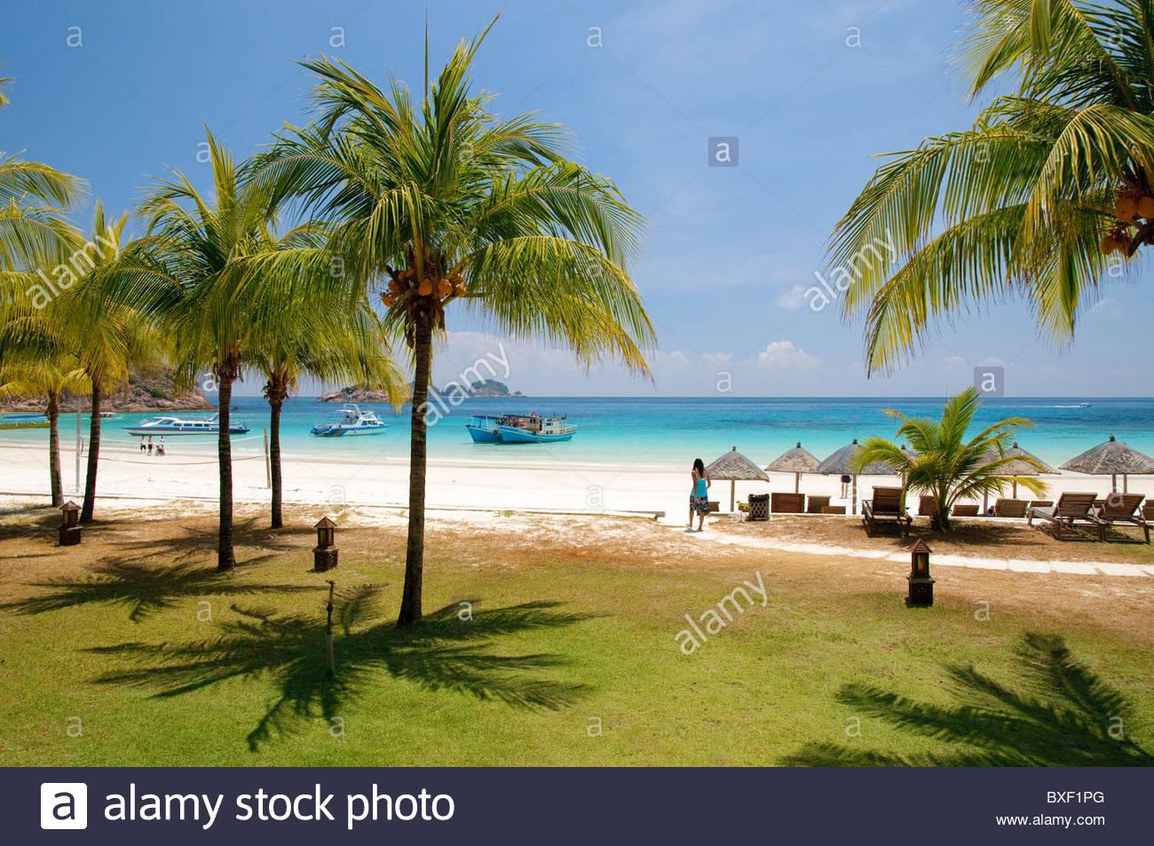 Beach with palm trees, Pulau Redang island, Malaysia, Southeast Asia, Asia Stock Photo