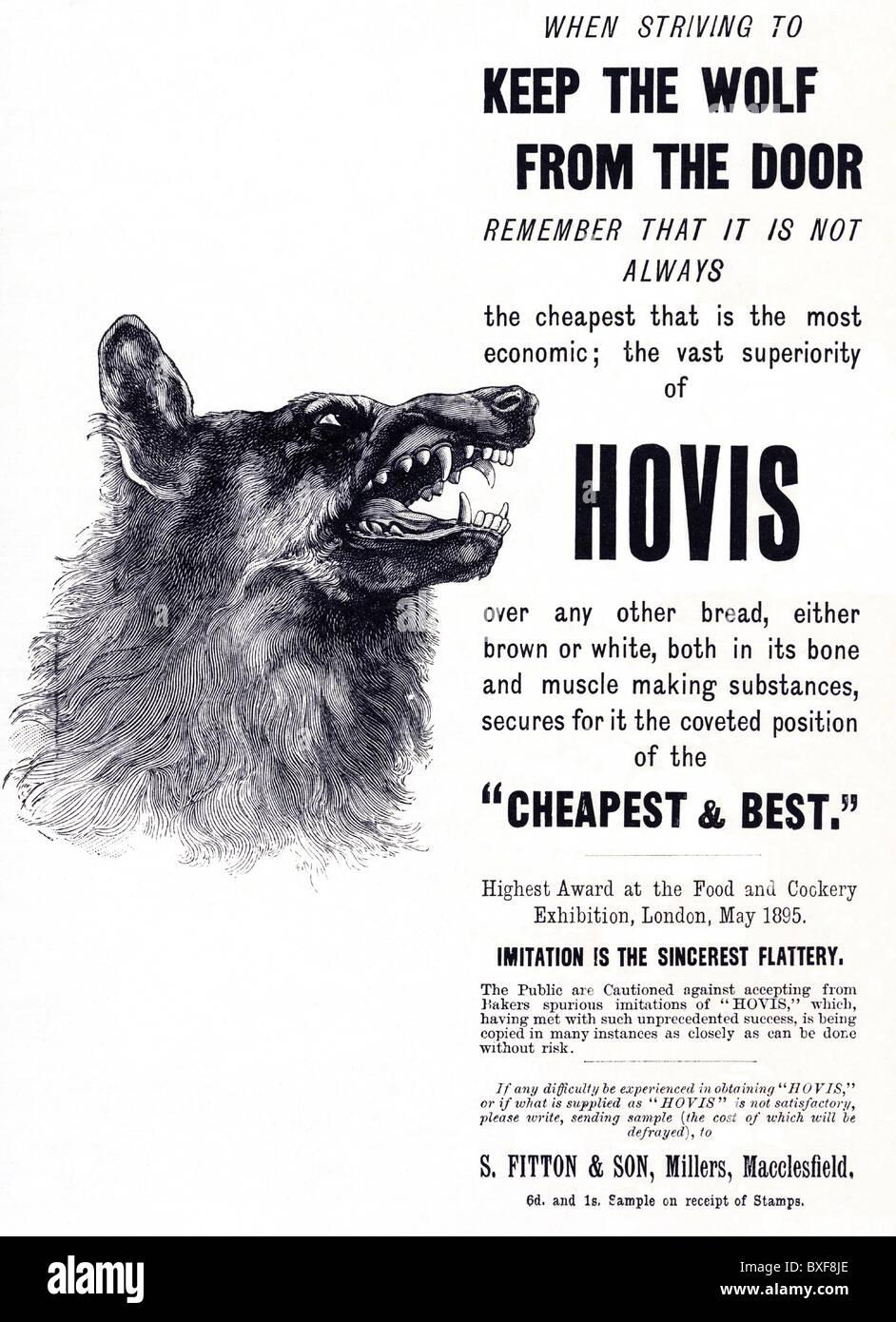 Hovis bread advert circa 1896 featuring wolf Victorian advertisement - Stock Image