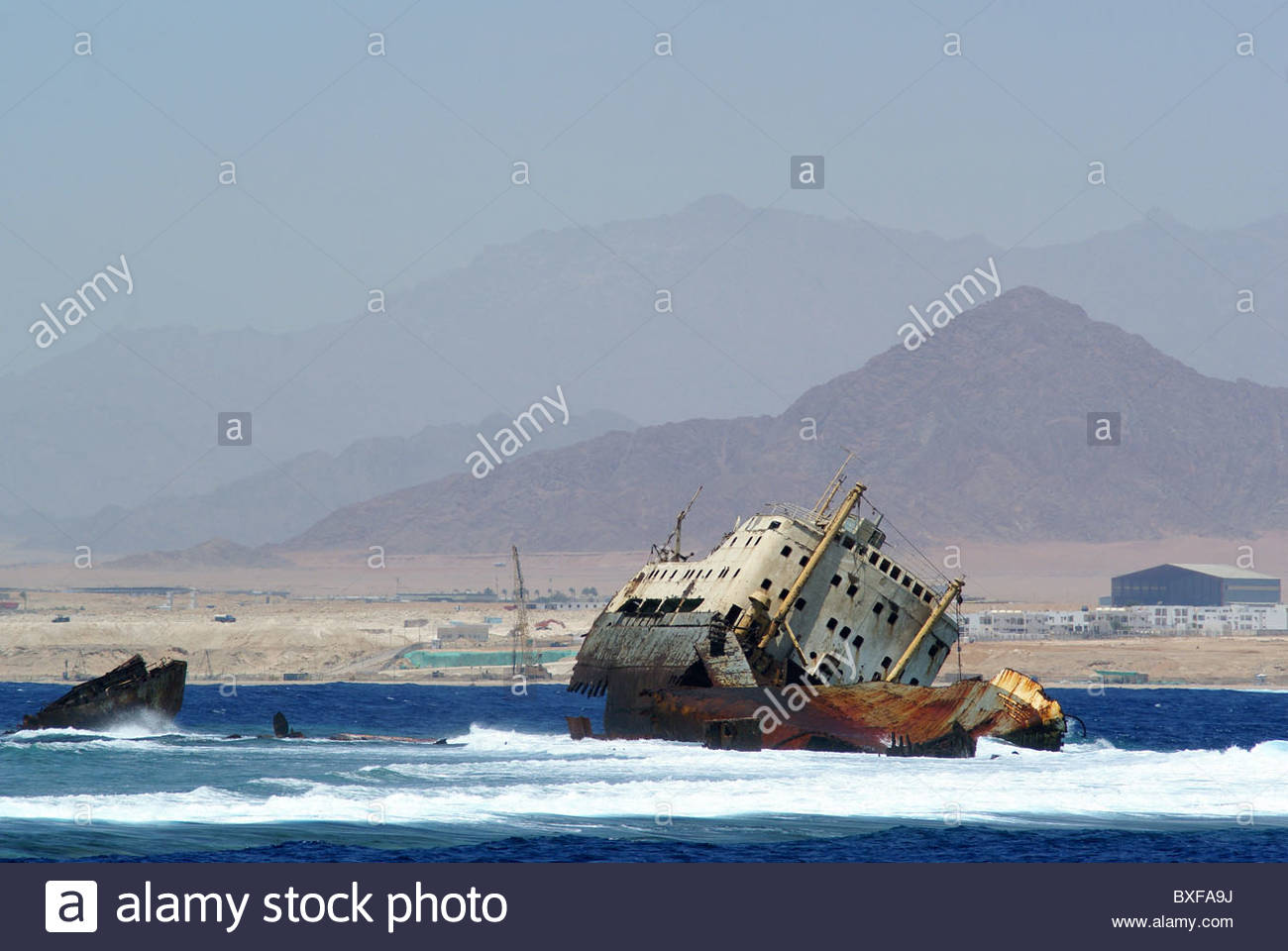 Sharm el Sheikh - Egypt : Loullia - or Lovilla - shipwreck - near Tiran - Stock Image