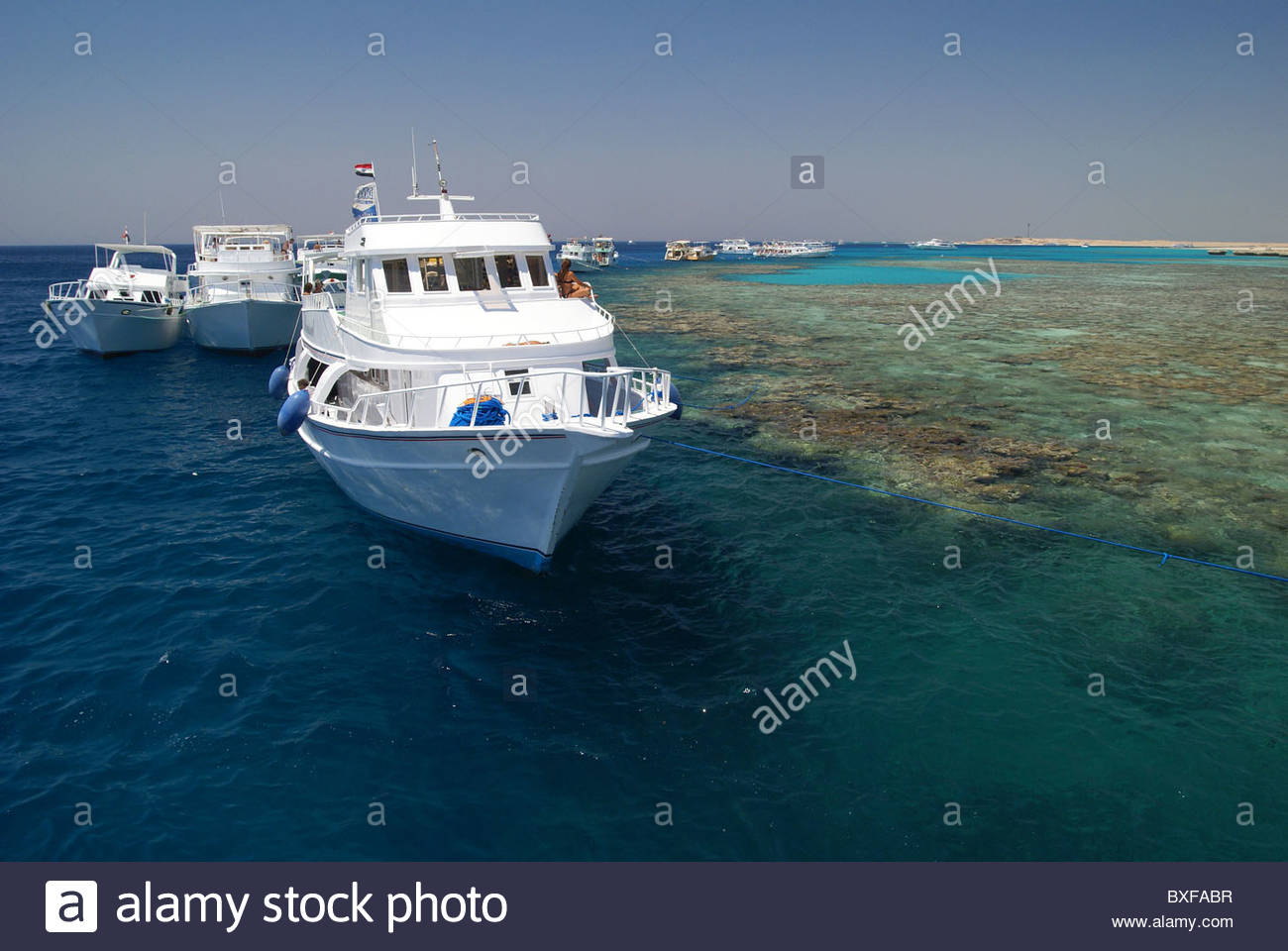Dive boats at Sharm el Sheikh - Egypt - Red Sea - Stock Image