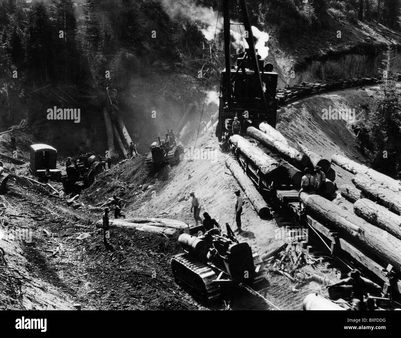 agriculture, forestry, lumberjacks, loading lumber on railroad cars, Westwood, California, 1920s, , Additional-Rights - Stock Image