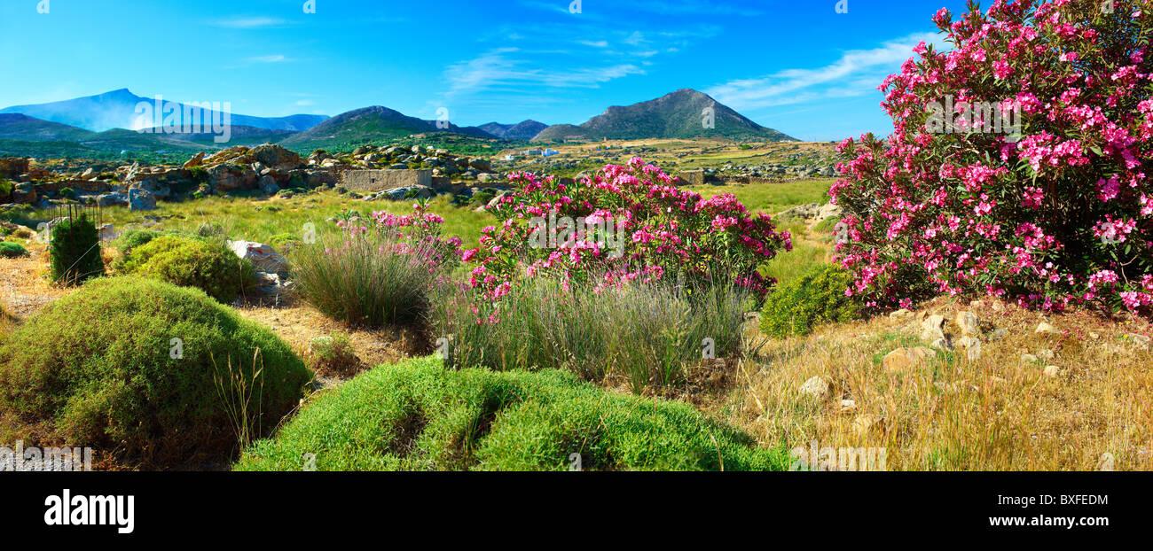 Kalamitsia , Naxos, Greek Cyclades Islands - Stock Image