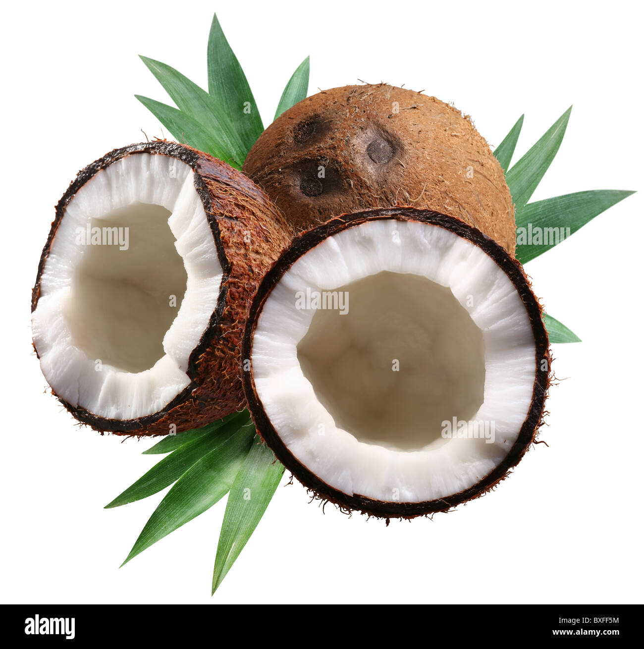 Chopped coconuts with leaves on white background. File contains a clipping paths. - Stock Image