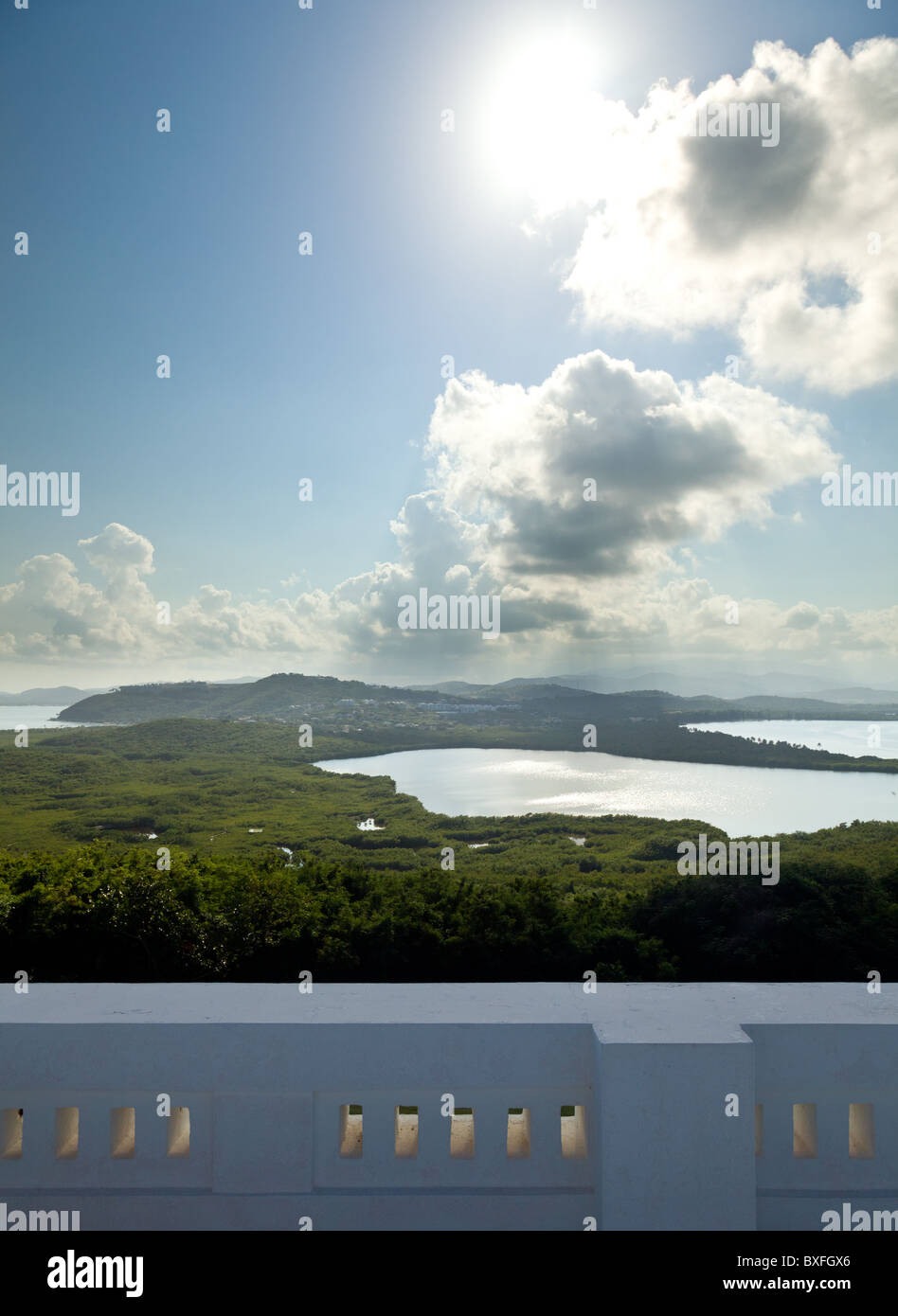 El Yunque National Forest, Puerto Rico - view across a lagoon towards the tropical rainforest - Stock Image