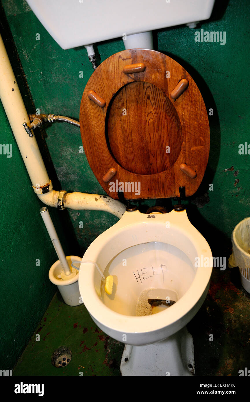 Old fashioned toilet seats 18