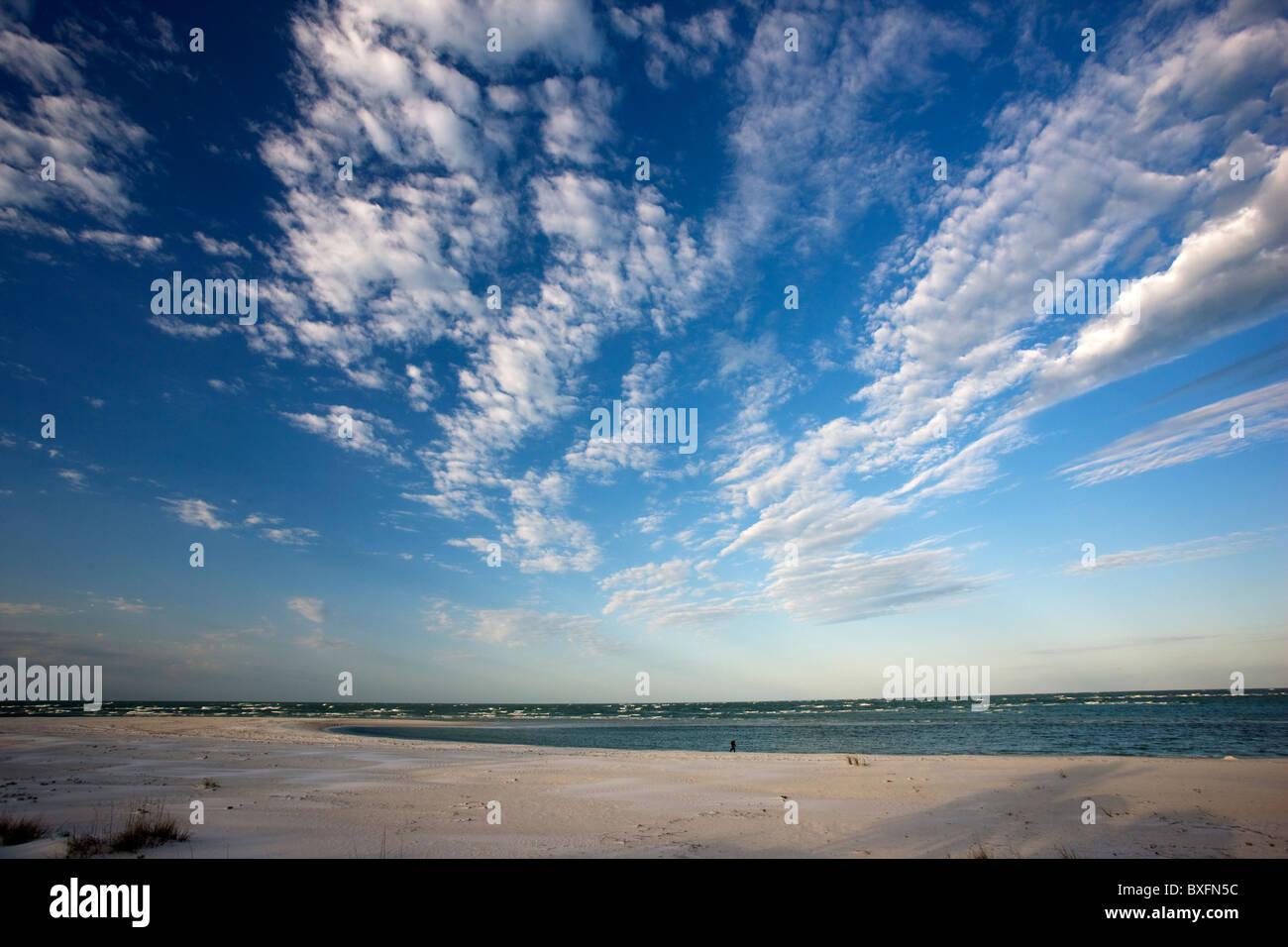 Idyllic shoreline and sandy beach at Anna Maria Island, Florida, United States of America - Stock Image