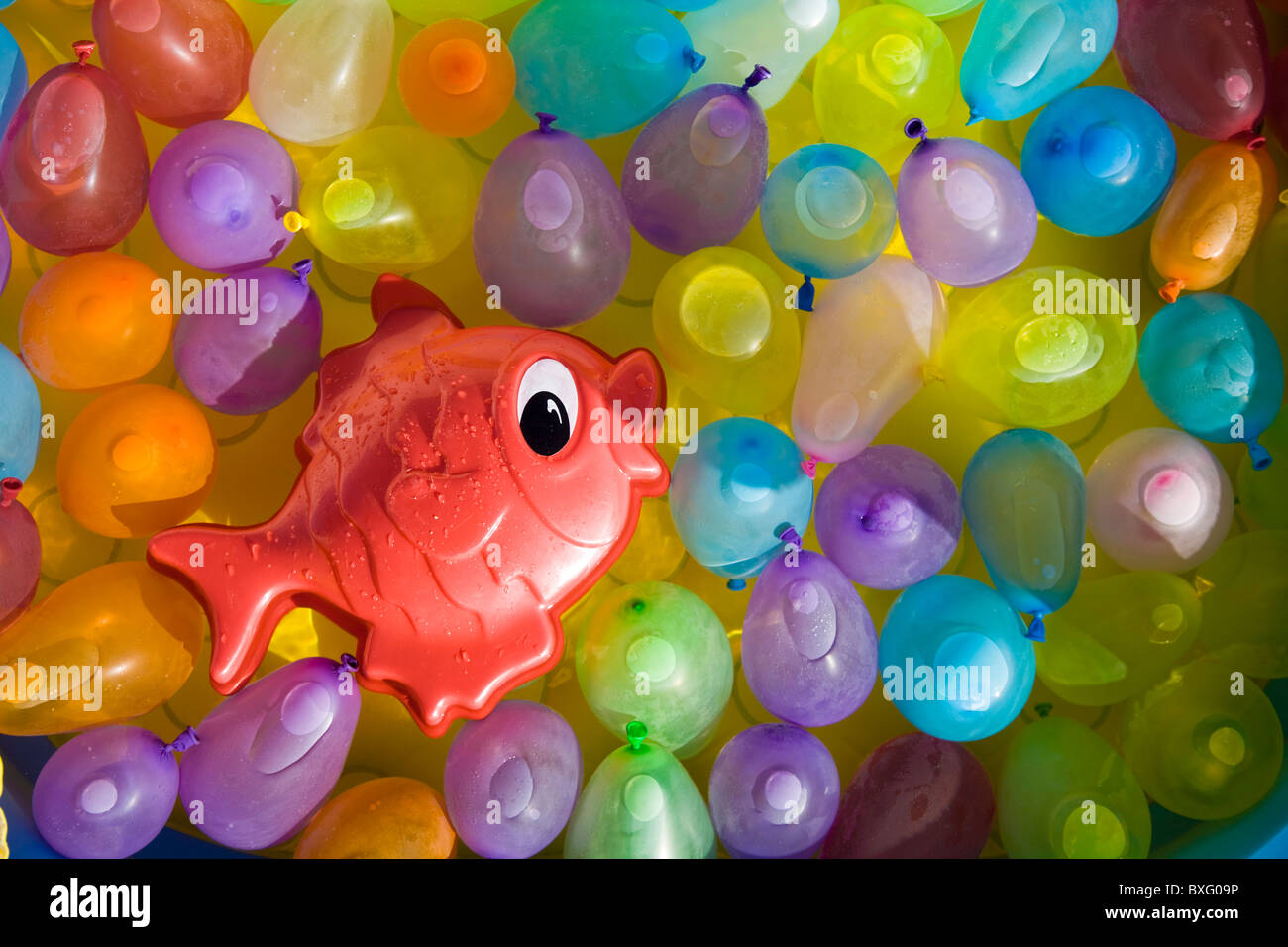 Toy fish between colored balloons - Stock Image