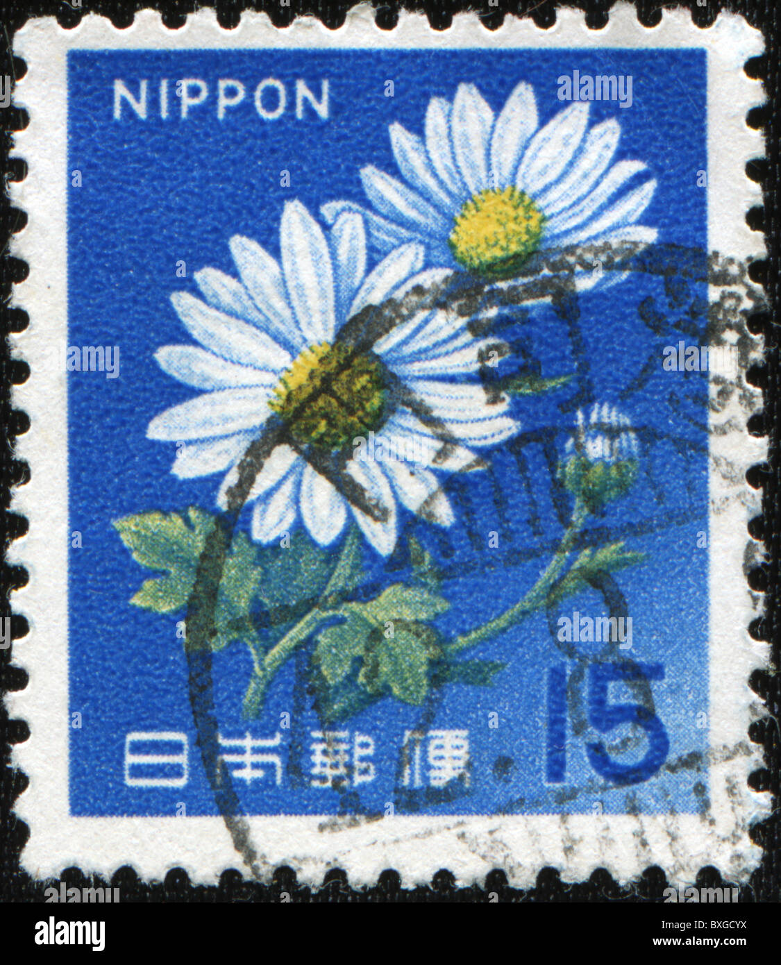 JAPAN - CIRCA 1960s: A stamp printed in Japan shows camomile, circa 1960s Stock Photo