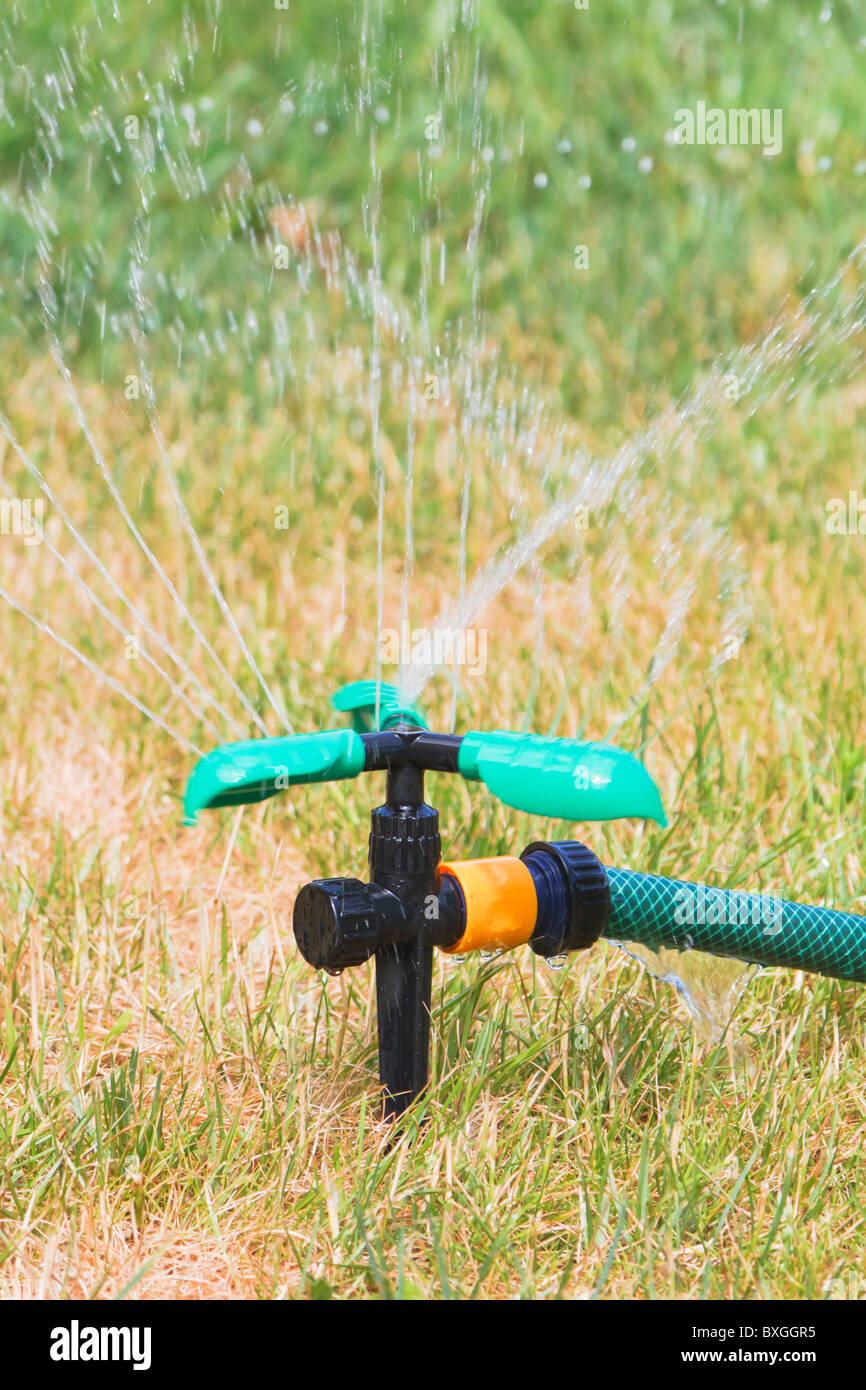 Close up of lawn sprinkler in hot summer day - Stock Image