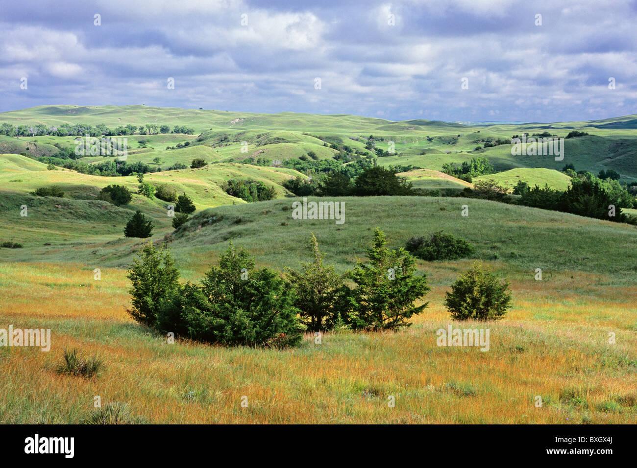 The Sandhills in early morning light, Hooker County, Nebraska, USA - Stock Image