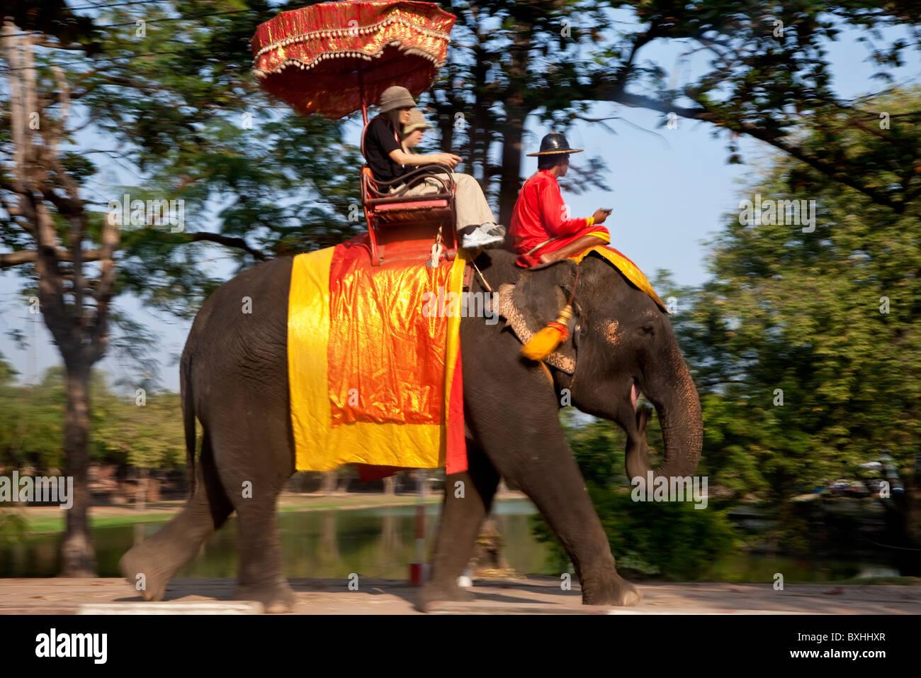 Elephant tourist rides, Ayutthaya, Thailand - Stock Image