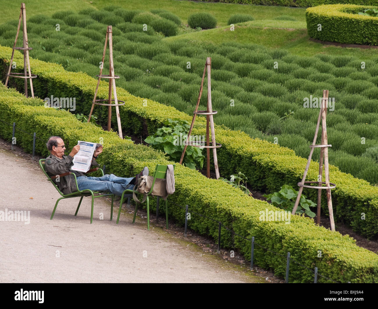 Readding in the parc - Stock Image