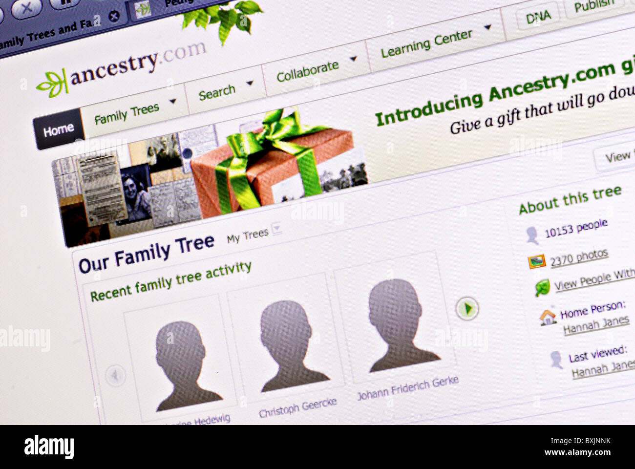 Family tree and genealogy information on Ancestry.com - Stock Image