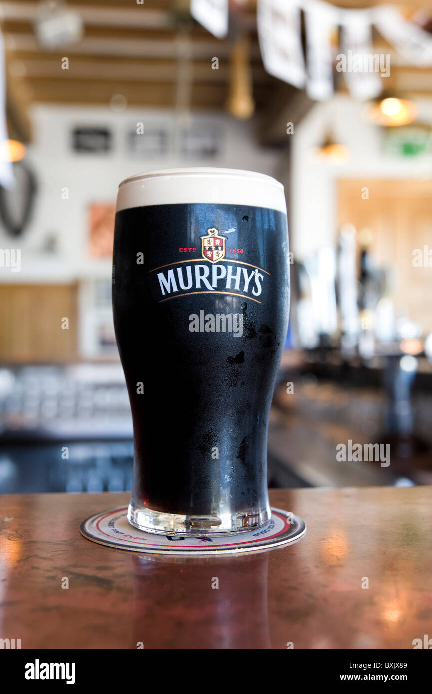 Pint of Murphy's stout beer, Ireland - Stock Image