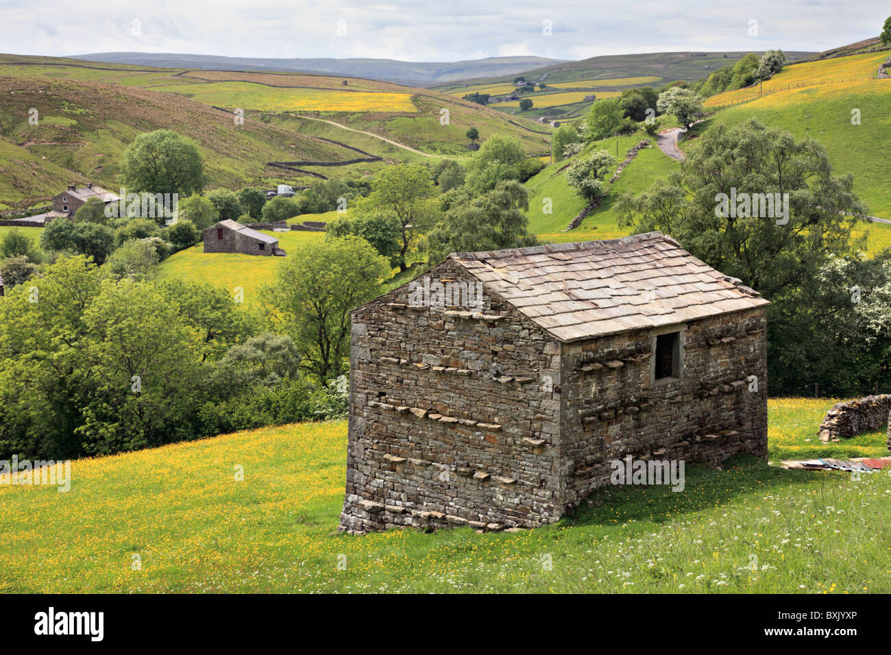A barn near Keld in Upper Swaledale - Stock Image