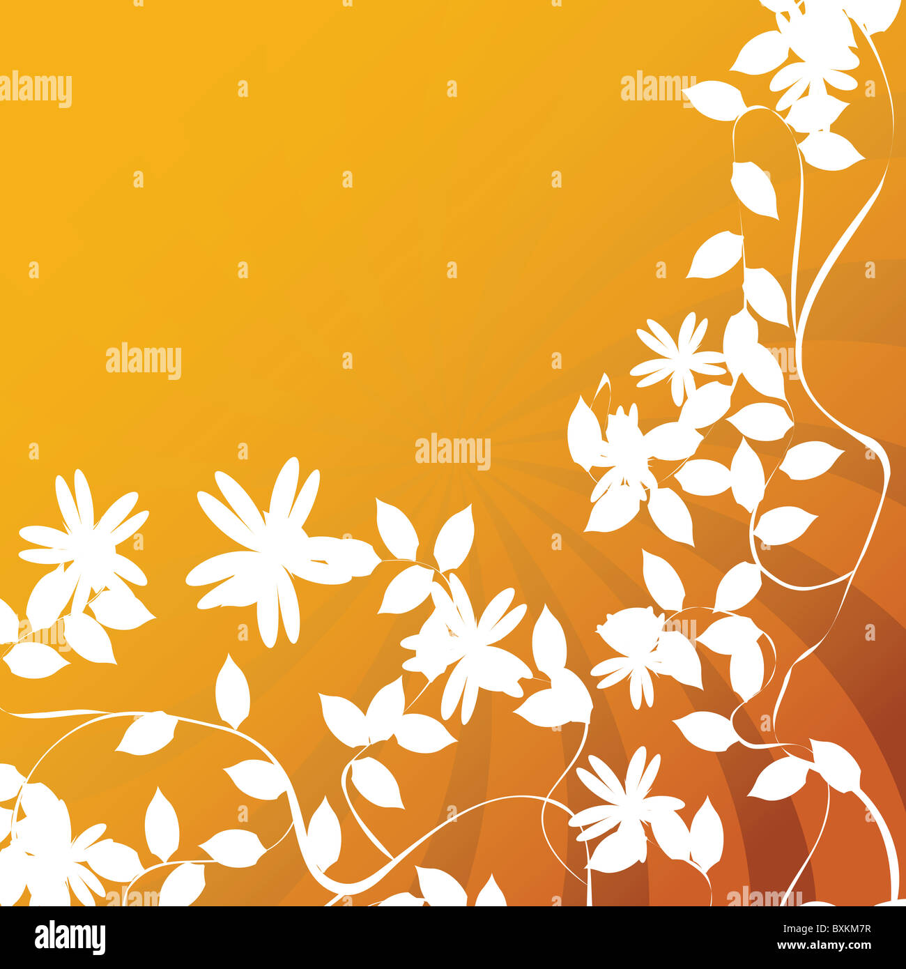 Flower and leaf - Stock Image