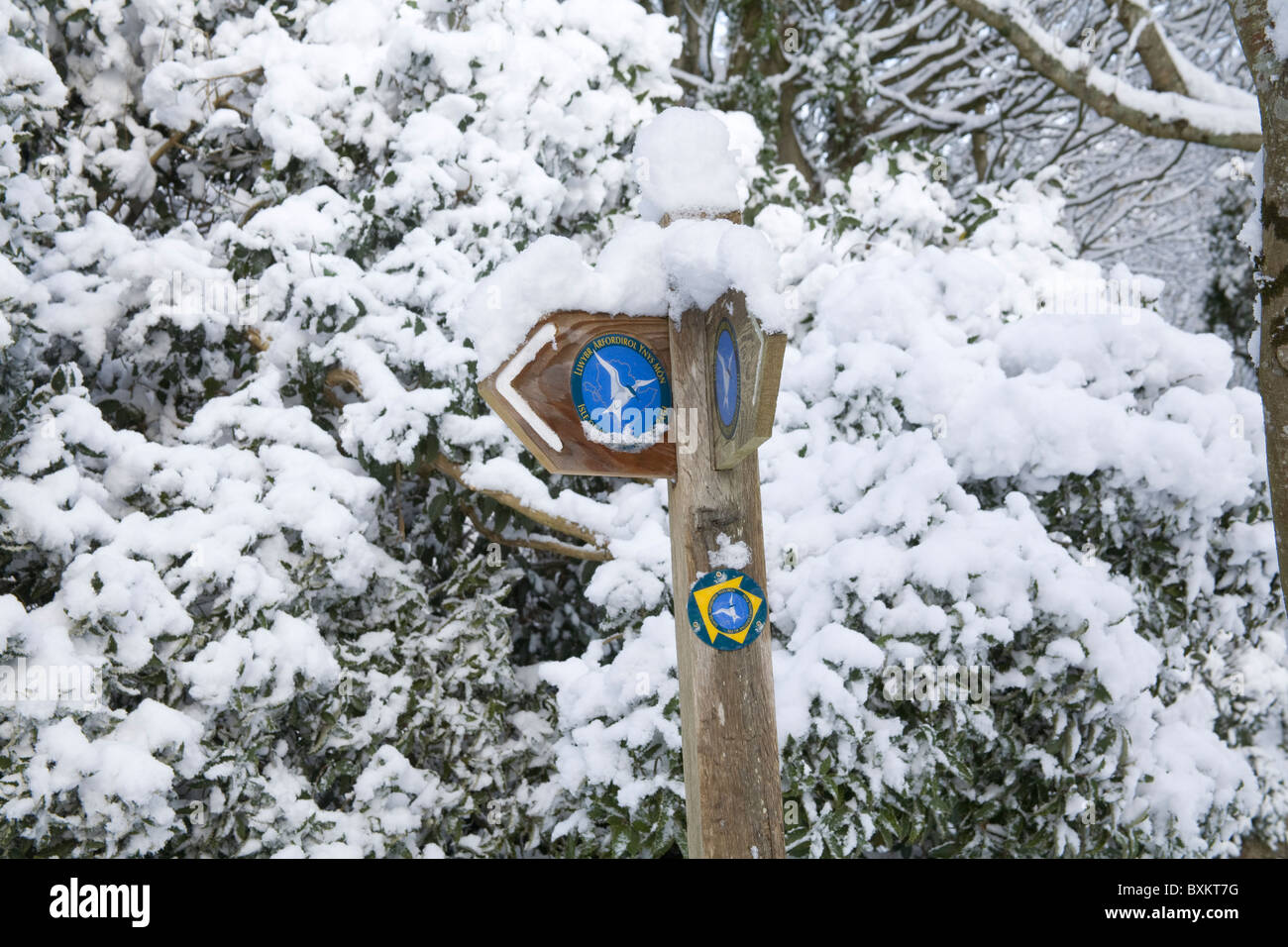 Isle of Anglesey North Wales UK December Coastal Footpath sign silhouetted against snow after unusually heavy snow - Stock Image