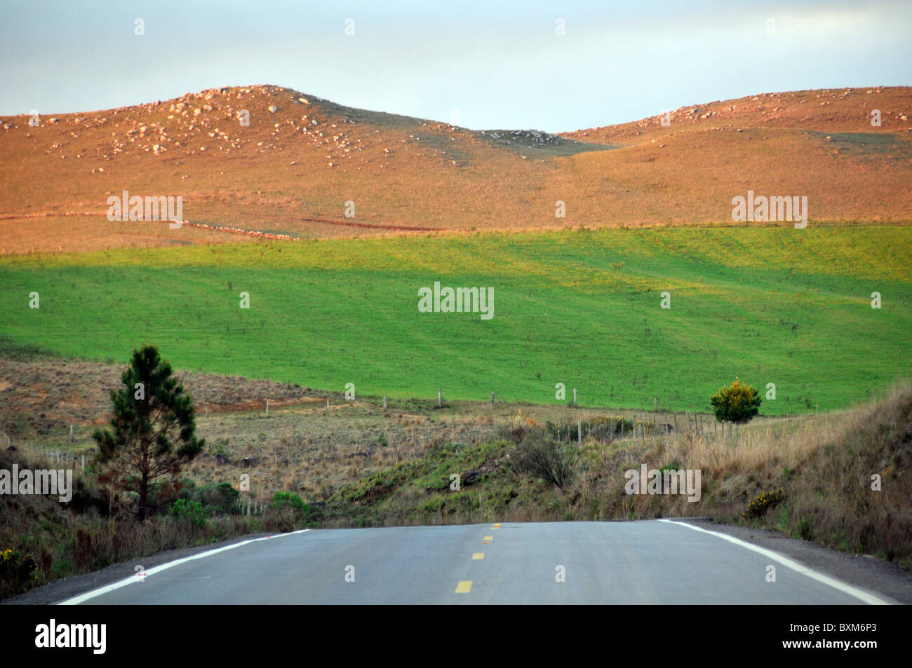 Road, pasture, and hills, in the Serras Gauchas area, Rio Grande do Sul, Brazil Stock Photo