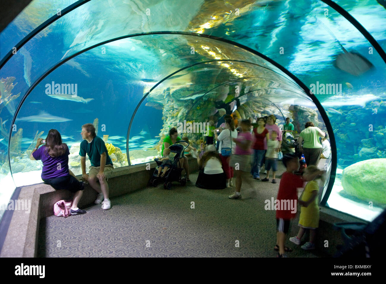 Henry Doorly Zoo - Scott Aquarium - Stock Image