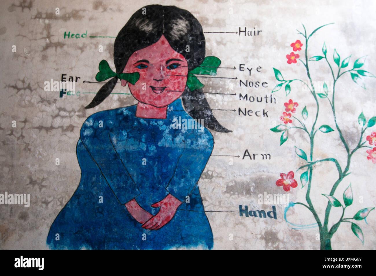 Pakistan .Al Haq Public School. 230 pupils, 9 teachers.Wall painting of girl showing parts of the body, flood damaged. - Stock Image