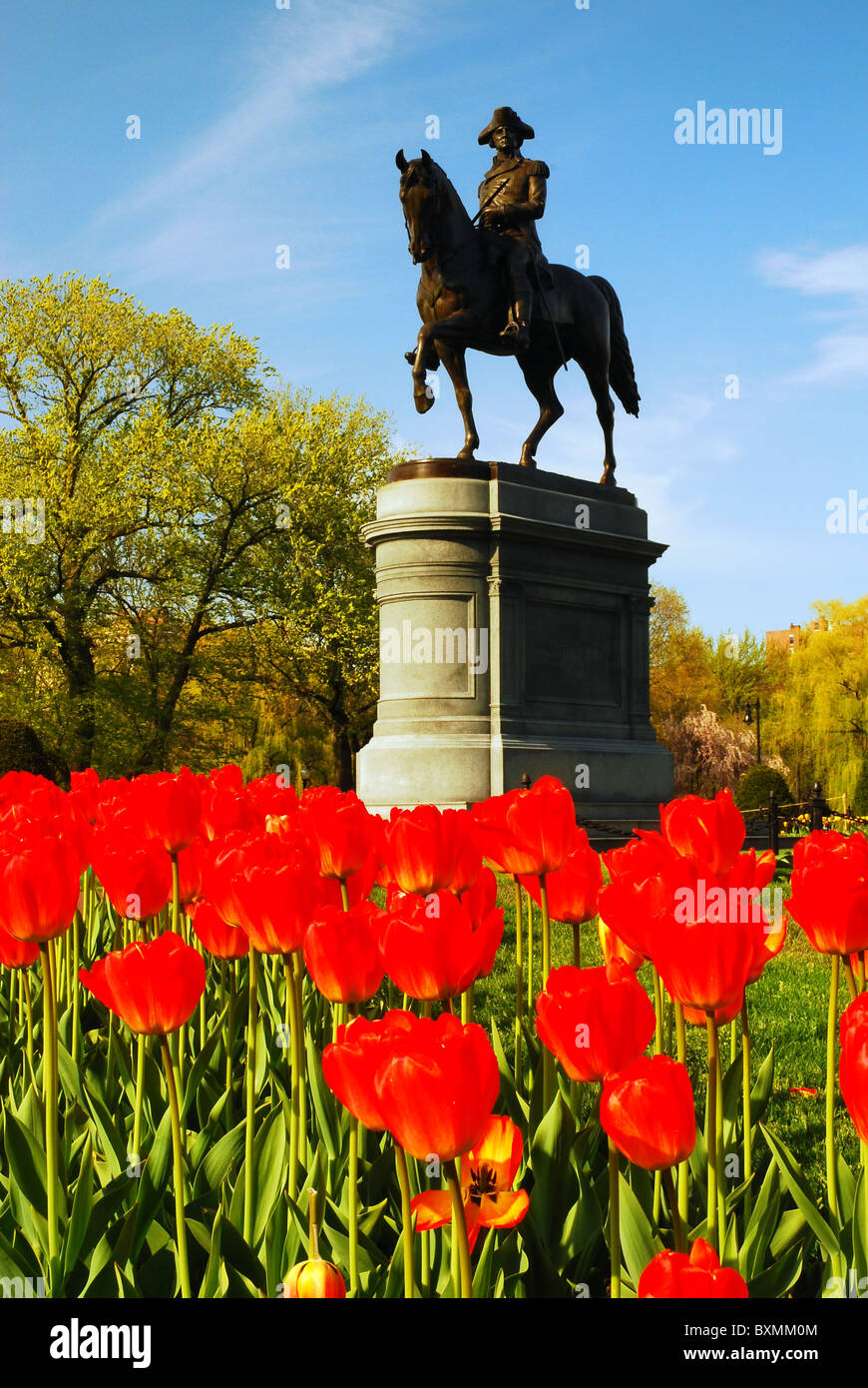 A Statue of George Washington highlights the Boston Public Garden in Spring - Stock Image