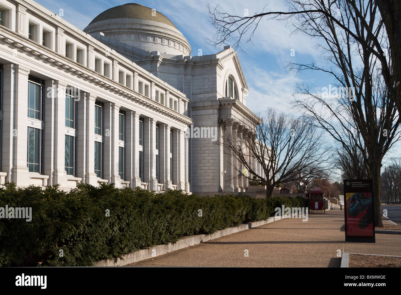 National Museum of Natural History, Smithsonian Institution, on the National Mall, Madison Drive, Washington DC - Stock Image