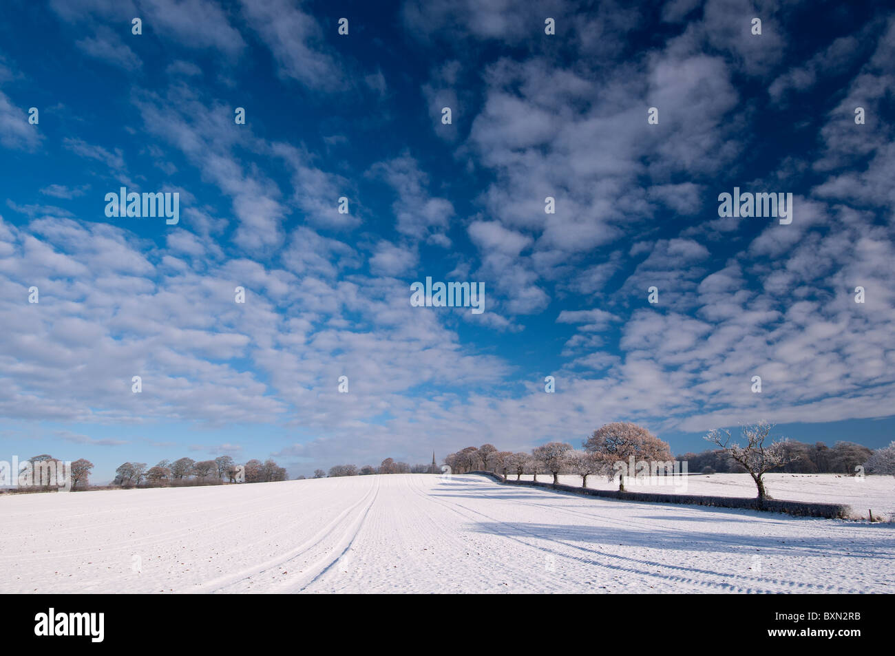 Winter comes to Keele, Staffordshire - Stock Image
