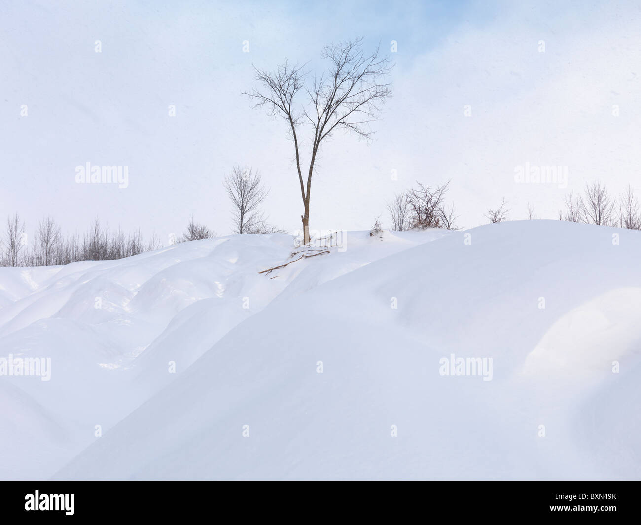 Snow dunes under blue sky. Wintertime scenic. Ontario, Canada. - Stock Image
