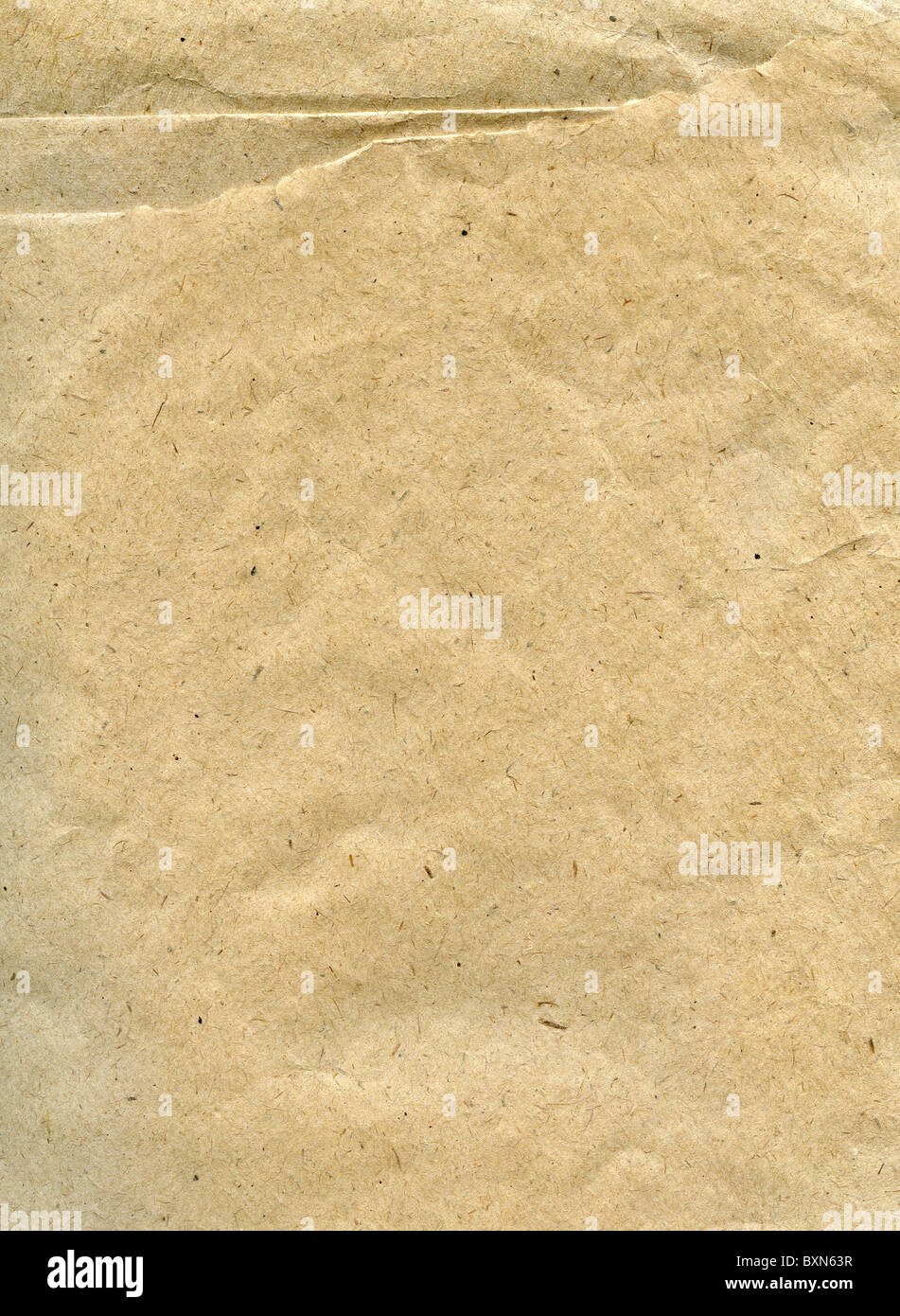 Textured obsolete recycled paper with natural fiber parts - Stock Image