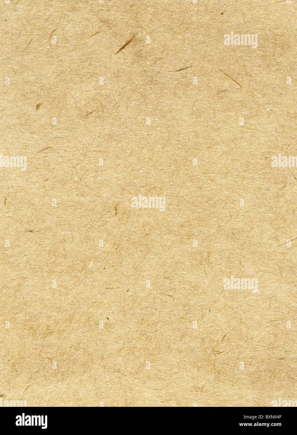 Textured recycled paper with natural fiber parts - Stock Image