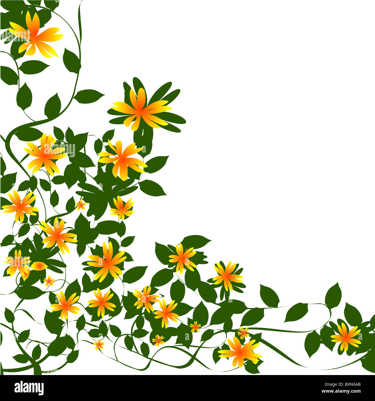 Border floral - Stock Image