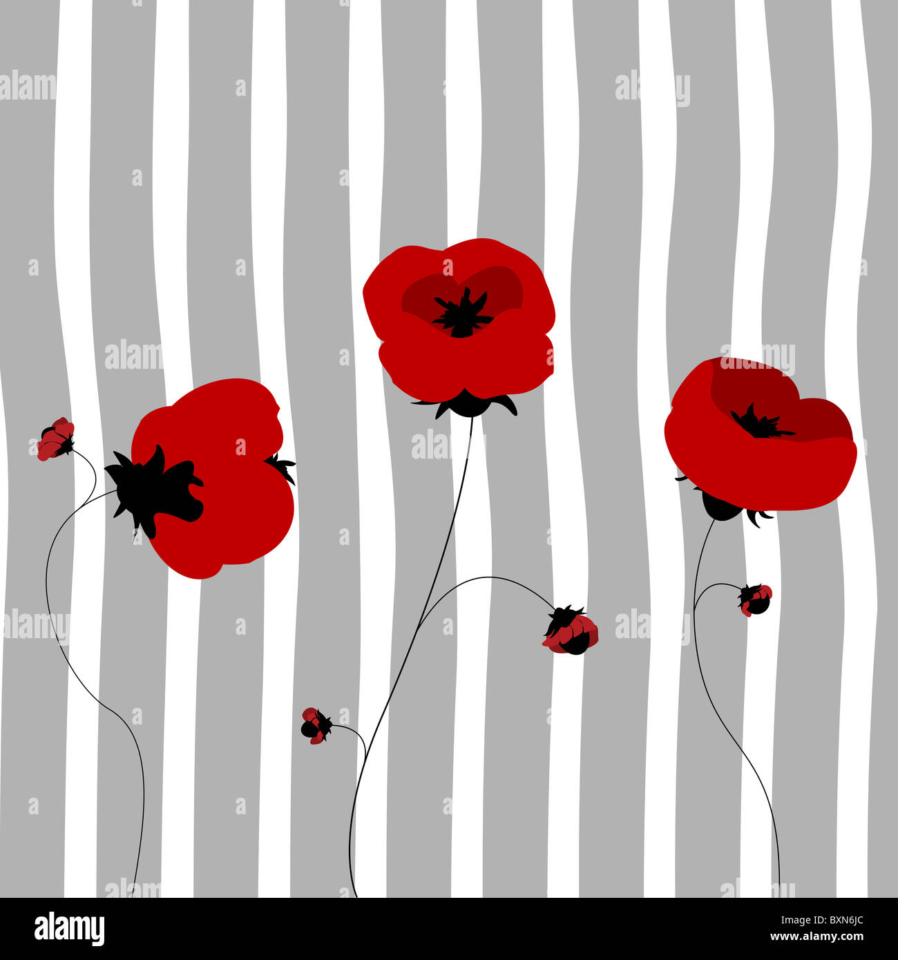 Poppy card - Stock Image