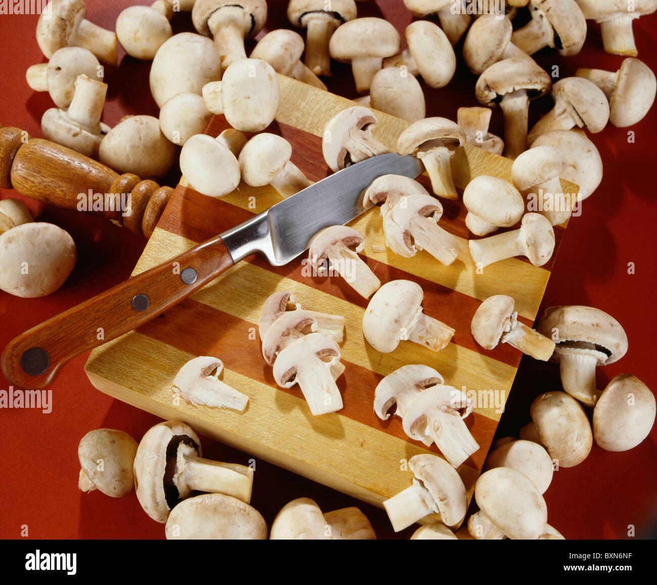 COMMON (EDIBLE) MUSHROOMS (AGARICUS CAMPESTRIS) / STUDIO Stock Photo
